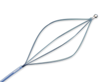 Disposable Endoscopy Retrieval Basket - Ball